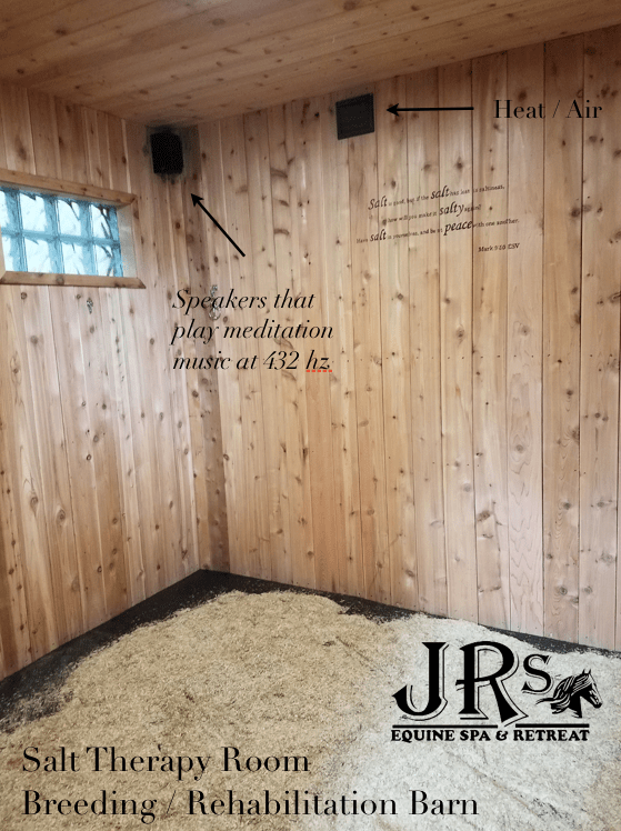 JRs Equine Spa and Retreat Picture 2 100919 Equine
